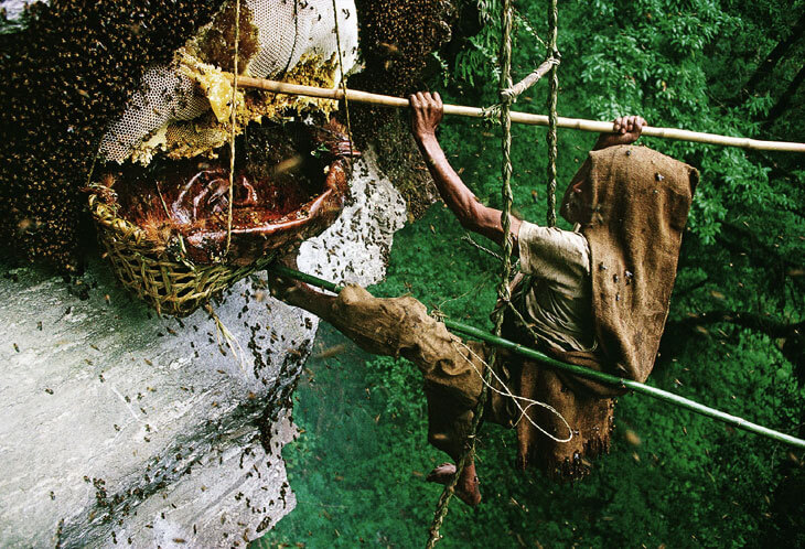 Locusts and wild honey to deal with arbitrage